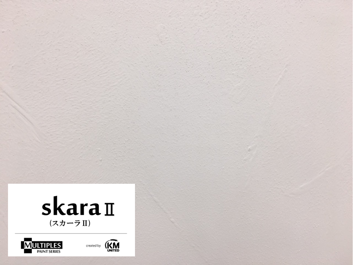SkaraⅡ(スカーラⅡ)