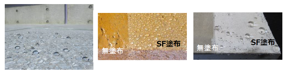 ポルトガードSF表面2