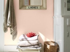 2094-60 Pleasant Pink③